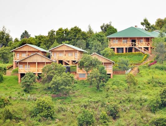 ruhija-gorilla-lodge-uganda