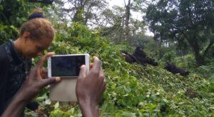 Gorilla Trekkers