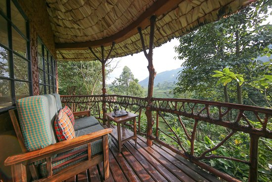 Mahogany Springs Lodge Bwindi